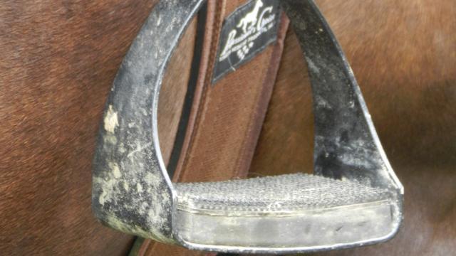 L'équipement du cheval
