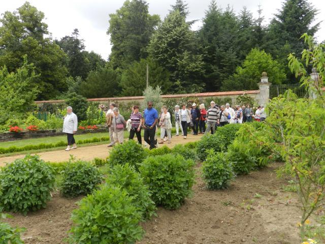 Visite guidée au Jardin Potager