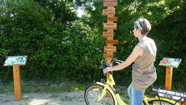 A vélo sur la Voir Verte