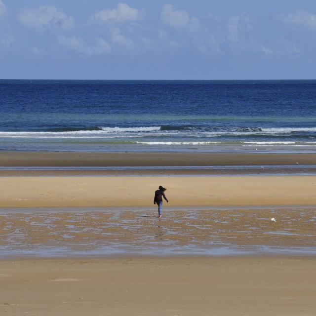 beach-2980012-1920.jpg