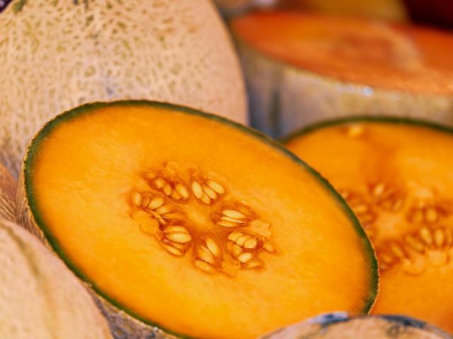 melon-3433835-1920.jpg